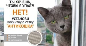 72btdOhUjQo-300x162 Москитная сетка АНТИКОШКА